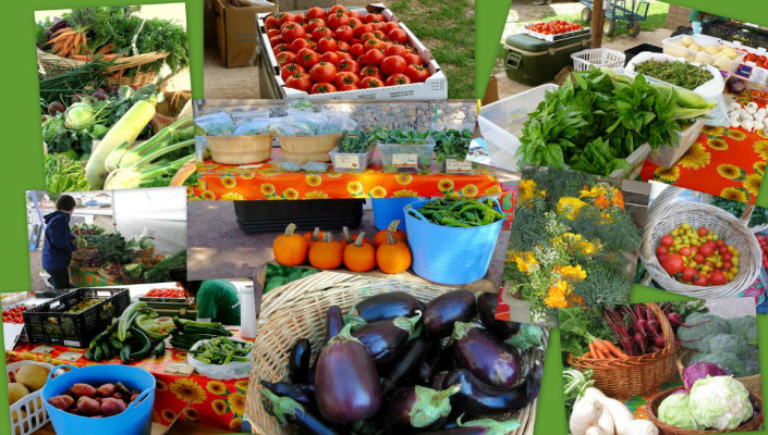 Lancaster PA Hotel Farmers Markets | Harvest Drive Family