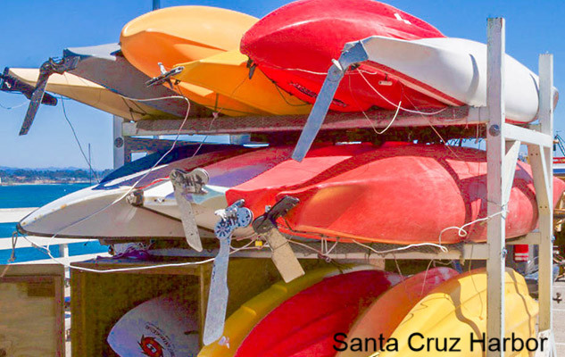 Santa Cruz, California beaches